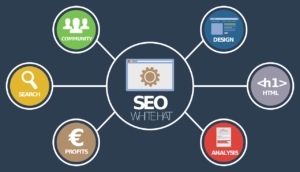Search Engine Optimization SEO Support Services for Agencies